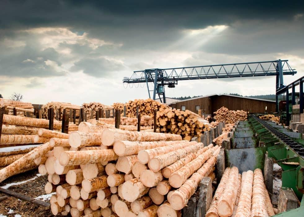 Производство древесины, технологии производства древесины, производства пиломатериала